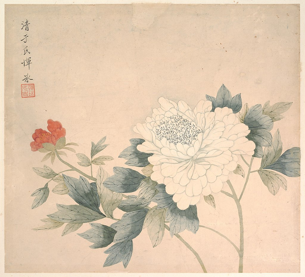 Flower Study By Yun Bing  (花卉圖), Metropolitan Museum of Art